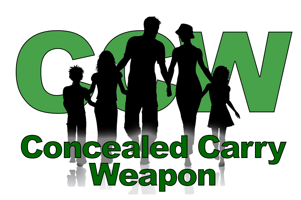 Concealed Carry Ccw Classes Available At Kings Gun Center